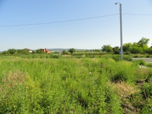 Участок в Анапском районе по выгодной цене